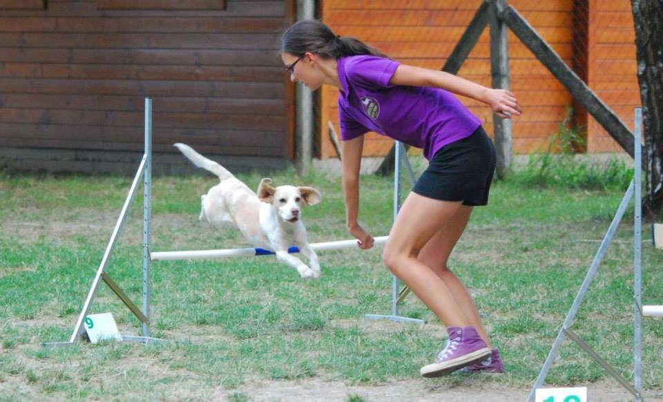 agility eletem sportja